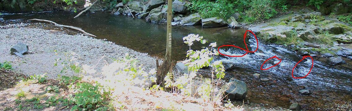 Foto einer Flussinnenkurve mit markierten Spots zum Schaufeln und Legen der Rinne