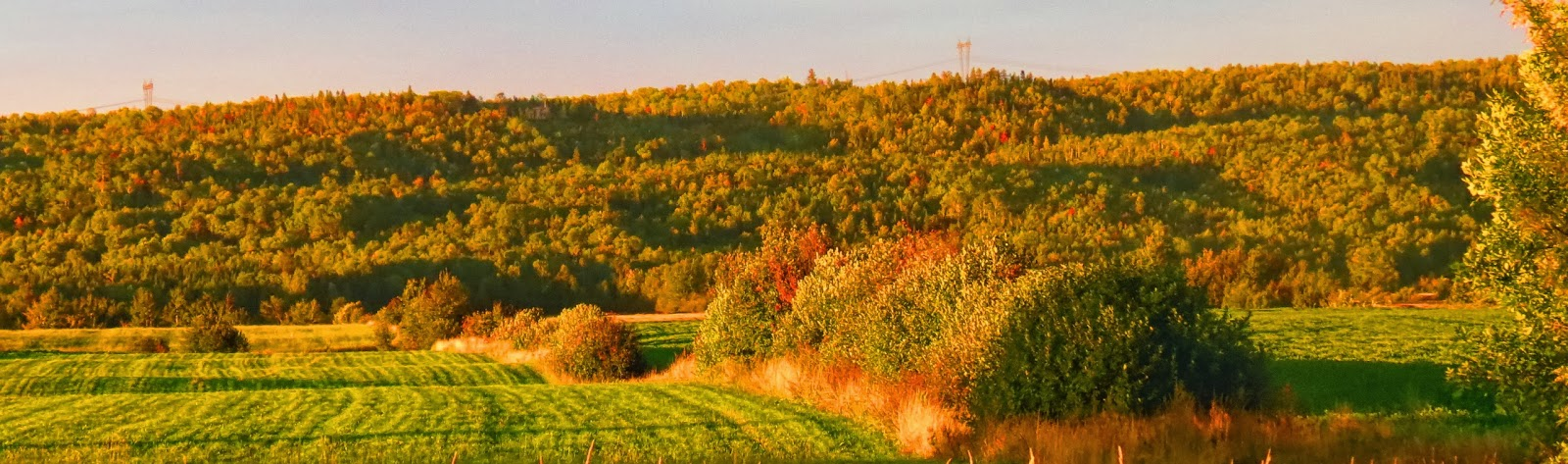 Métabetchouan à l'automne
