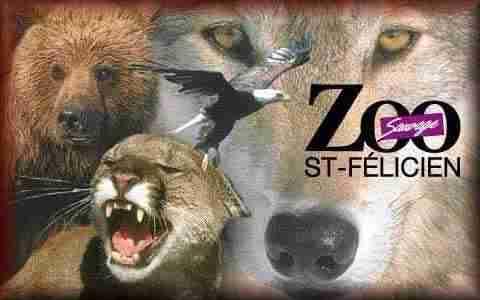 Zoo de St-Félicien