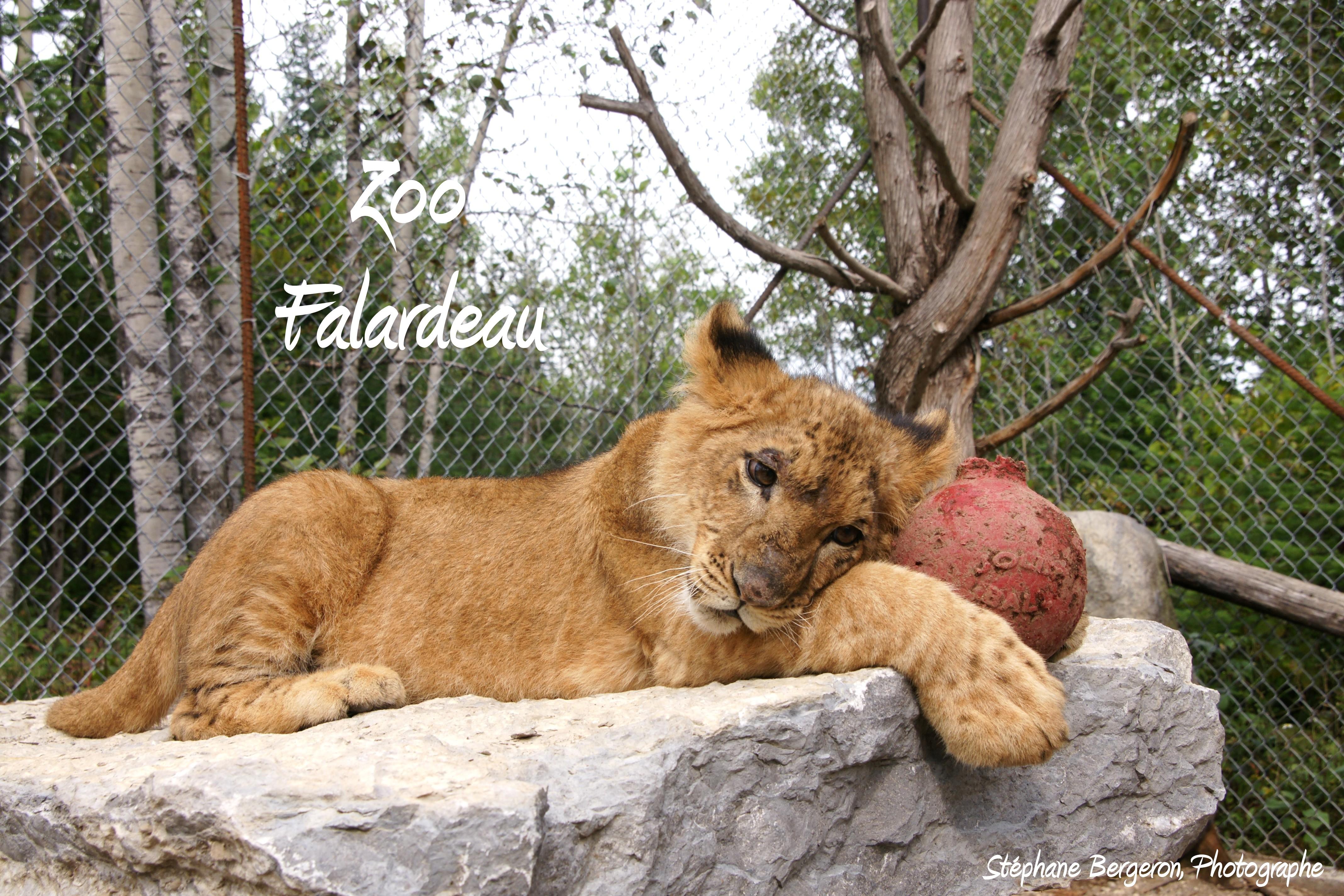 Zoo de Falardeau