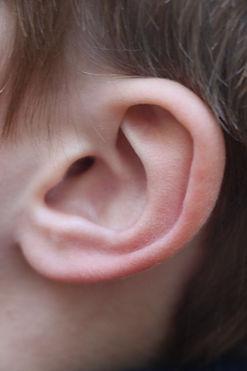 ear1.jpeg