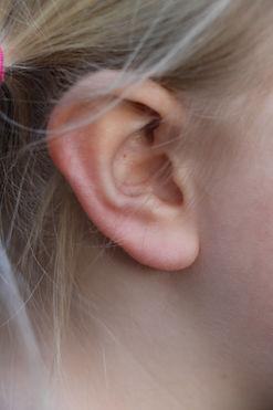 ear2.jpeg