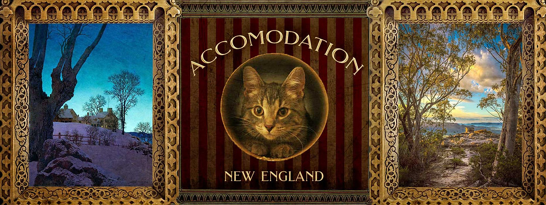 accomodation-#2.jpg