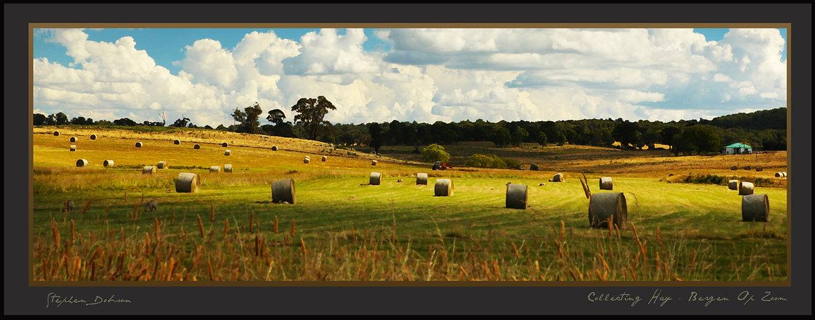 Collecting Hay - Bergen Op Zoom.jpg