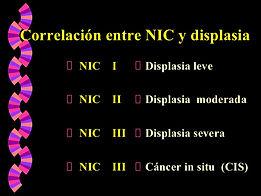 NIC.jpg
