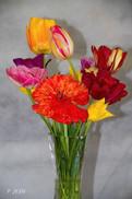 Bouquet 8877