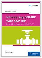 DDMRP for IBP.jpg