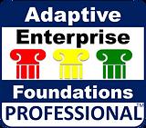 AEFProfessional.png