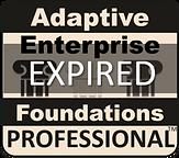 AEFbadgeEXP_edited.png