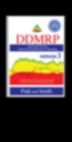 DDMRPV3promo.png