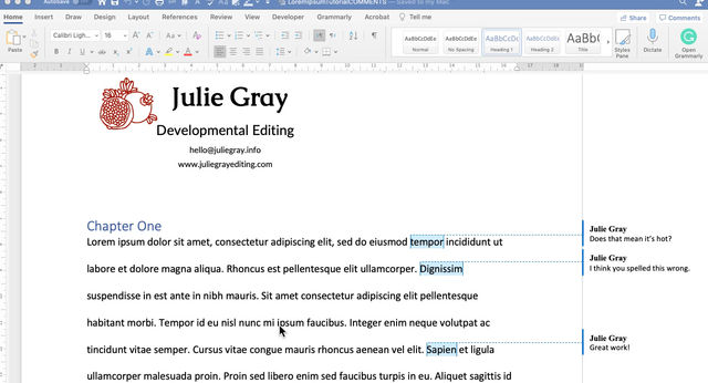 Working With Comments in Your Word Document