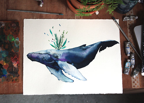 Nature Party Whale