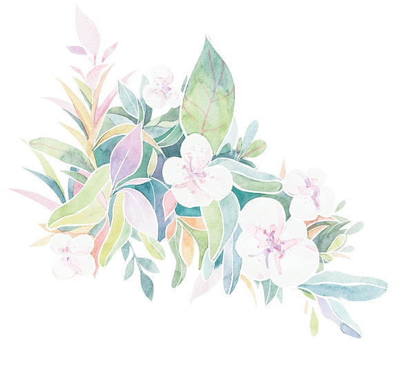 flower%20watercolour_edited.png