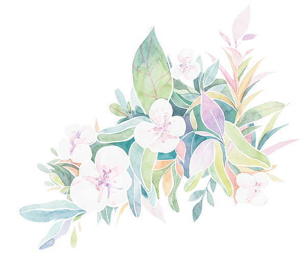 flower watercolour.png