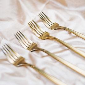 Forks Feya.JPG