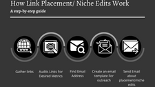 What Is Niche Or Link Placement Strategy?