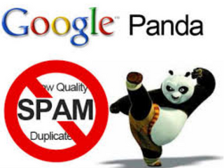 Journey of Google Panda Algorithm update and how to protect your website from this update