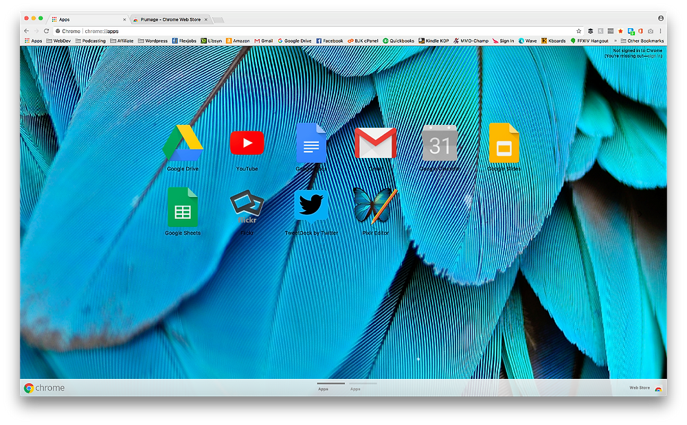 Chrome browser Themes Plumage