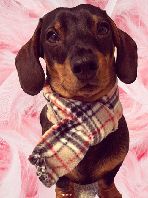 Brown check Luxury Fleece Dog Clothing, Burberry Brown Check Fleece Dog Scarf, Handmade UK