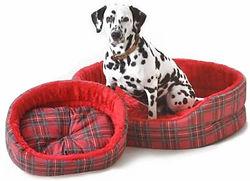 Dog Beds, Dog Bed, Dog Beds UK, Dog Walking