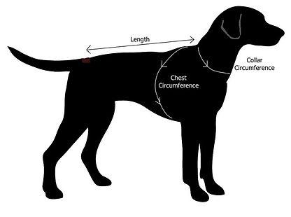 Dog Size Guide, Dog Measurements, Dog Clothing UK Size Chart