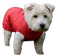 Chest Protector Dog Coats, Red Quilted Dog Coats, Chest Protector Coats UK