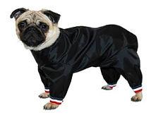 Dog Trouser Suit Short Leg