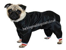 Short leg dog trouser suits UK, Dog Suits for all short legs breeds