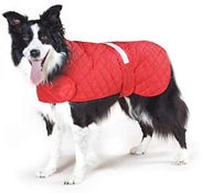 Dog Safety Coats, Safety Wear for dogs, Dog Walking, Cars