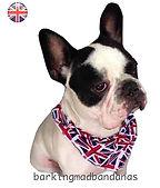 Handmade Dog Bandanas UK
