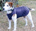 Chest Protector Dog Coats, Quilted Dog Coats, Winter Dog Coats, Waterproof Coats UK
