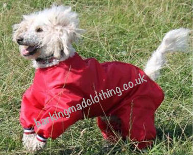 Dog Trouser Suits, all colours and ll Sizes available