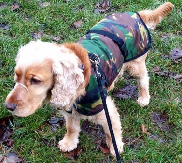 Waterproof Camouflage Dog Coat, also available in a Made to Measure option