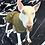 Handmade UK Dog Clothing, Designer Dog Clothes, Waterproof Dog Clothing, UK, Bull Dog Coats, Barber Dog Coats