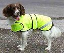 Dog Safety Coat, UK Dog Clothing, Wwaterproof Dog Coat UK