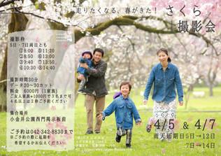 4月5日・7日 さくら撮影会☆
