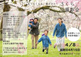 4月8日 桜撮影会!