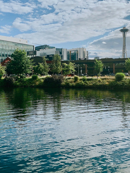 Seattle's Summer City Tour