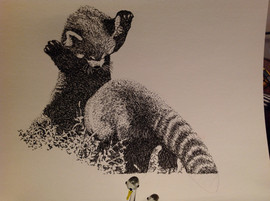 Red Panda. Pen and Ink