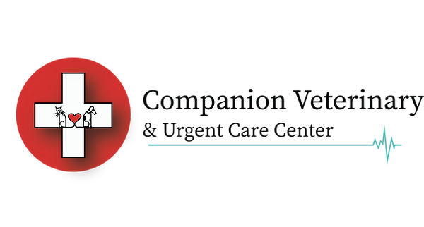 CompanionVetLogo.png
