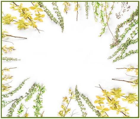 ALT HORIZ background frame green yellow