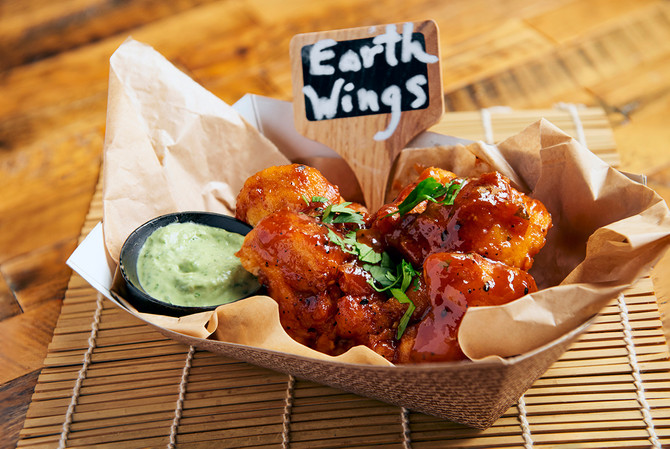 Earth Wings are Coming to the State Fair!
