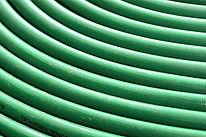 Grön Vattenslang