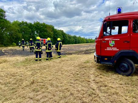 02/2020 Flächenbrandklein B1 zwischen Nikolaushof und Ausoniusstein