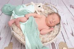 Neugeborenenshooting Korb Stofftier.jpg