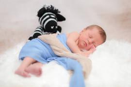 Neugeborenenshooting Stofftier.jpg