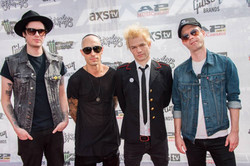 Grooming for Sum 41