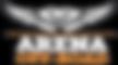 Logo Arena PNG.png
