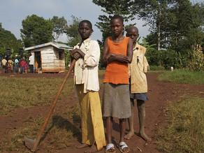 途上国の小規模農家向け有機肥料を販売する社会的企業