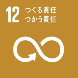 sdg_icon_12_ja